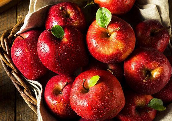 Iranian Apple Fruit