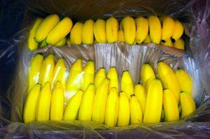 Banana Iran