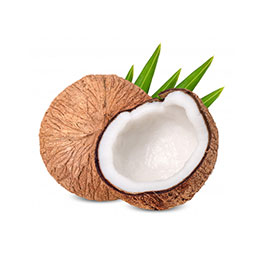 iran coconut import