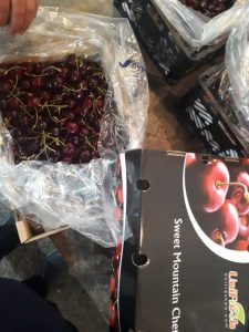 iran cherry export