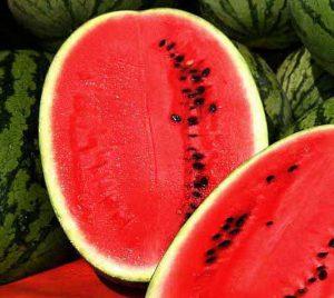iran watermelon