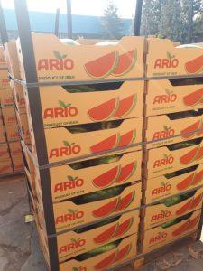 iran watermelon export
